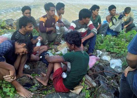 rohingya 1 29