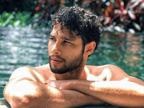 After Gully Boy Siddhant Chaturvedi to star in Yash Raj Films romantic comedy