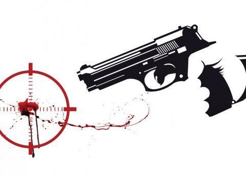 gun2 27