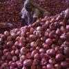 mak3s73g onions reuters 625x300 13 September 19