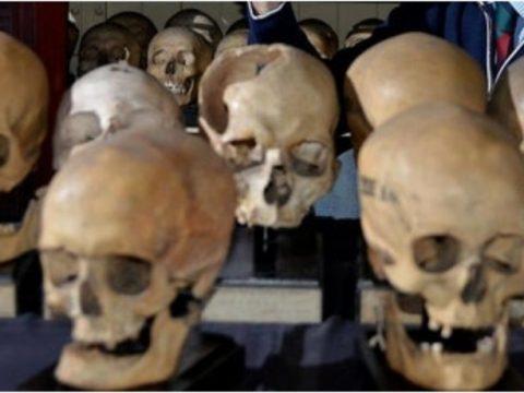 c291948f ac3c7cab skulls 1 850x460 acf cropped