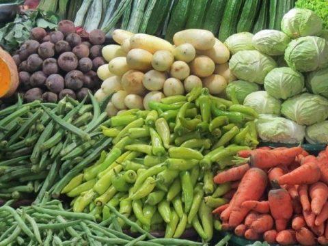 a48da406 6f0e062a vegetables edited 850x460 acf cropped 850x460 acf cropped