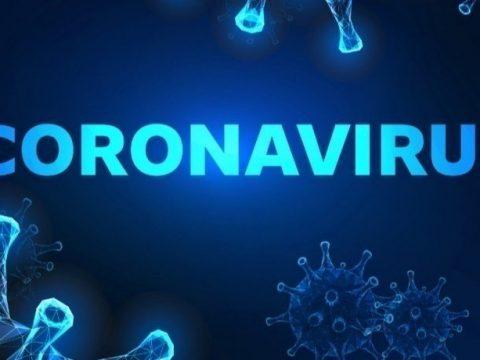 c3594461 5a59f5bb 0c9ee6dd bf44199c d6764adc coronavirus back 850x460 acf cropped 850x460 acf cropped 850x460 acf cropped 850x460 acf cropped