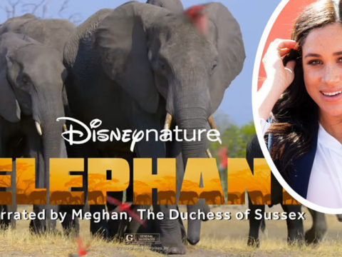 Meghan Markle Disney Elephant Documentary Reviews 1200x714 1