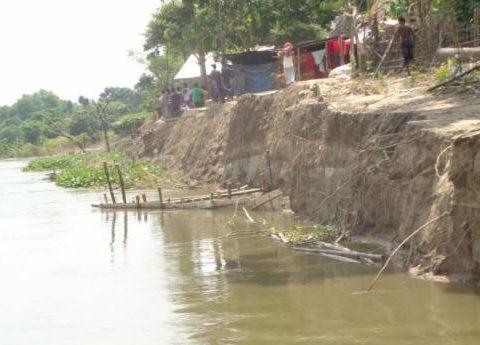 mahananda teesta erosion 1