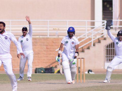 PCB Domestic cricket