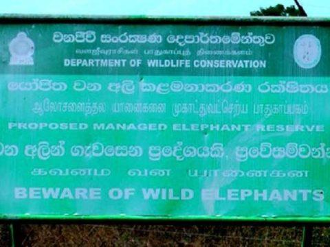 79748f60 286e095d hambantota managed elephant reserve 850x460 acf cropped