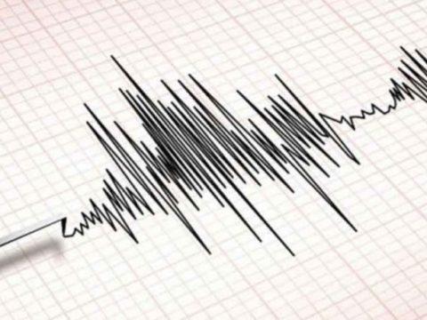 cf088032 f90089f5 01dc4ea3 f0395243 tremors 850x460 acf cropped 850x460 acf cropped 850x460 acf cropped